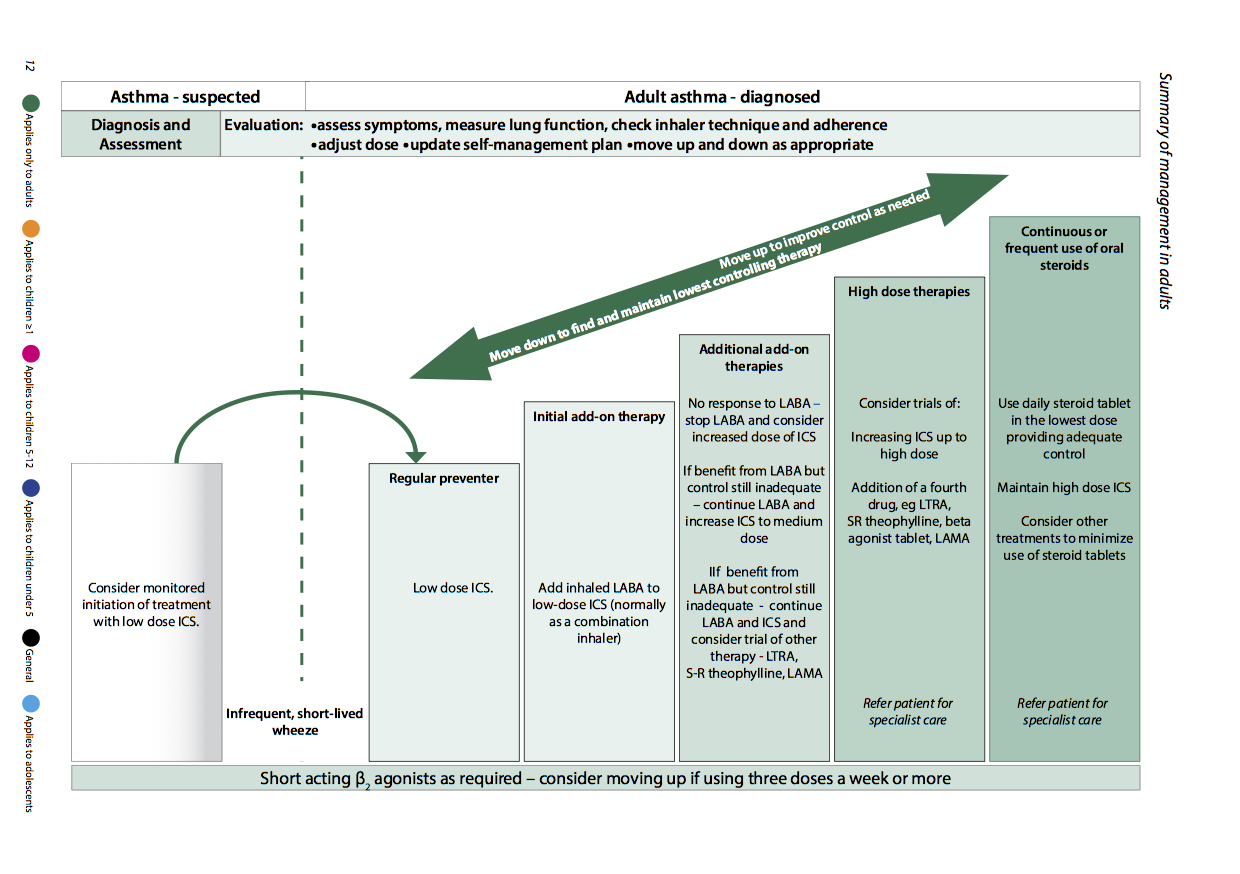 asthma management in adults